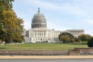 capitol_scaffolding_lores
