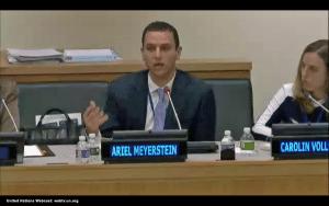 Ariel Meyerstein