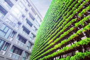 Vertical Garden – Green Wall – BioWall